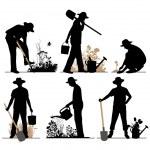 Gardener. — Stock Vector #44810341