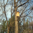 Birdhouse — Stock Photo #14110510