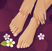 Healthy hands and feet with french manicure — Stock Vector