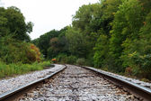 Railroad in the woods — Stock Photo