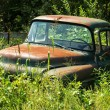 Abandoned vintage truck — Stock Photo #14280401
