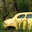 Abandoned vintage car - Stock Photo