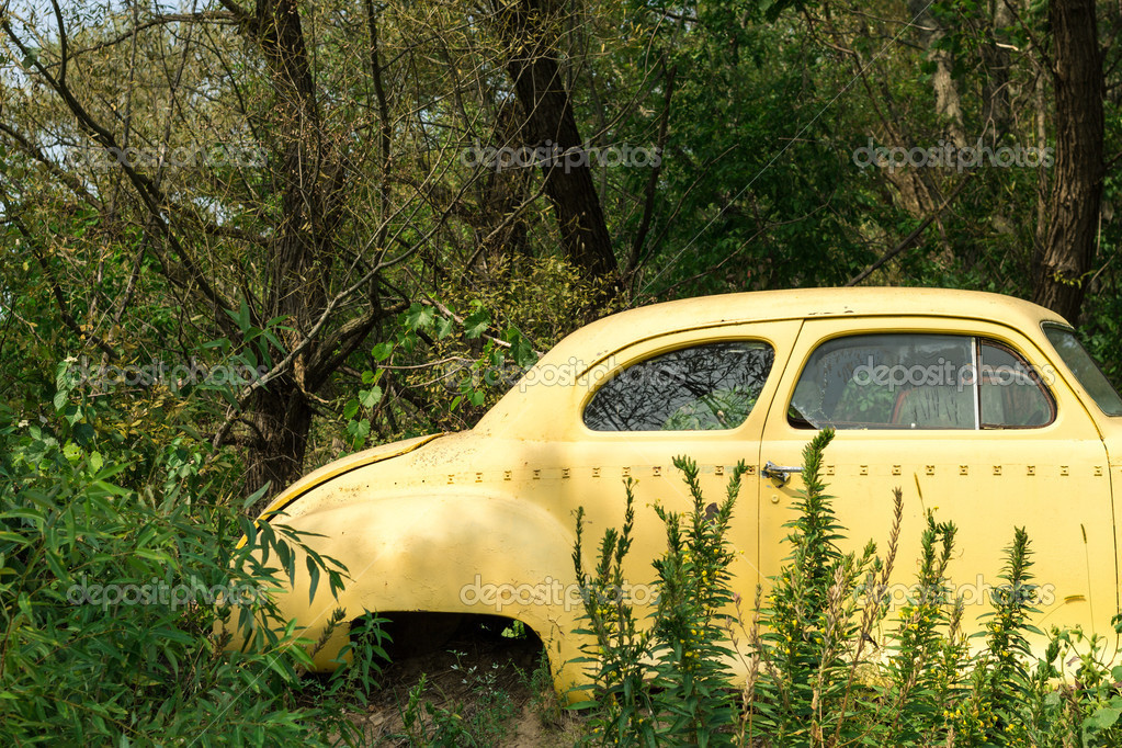 An old American classic car hidden in the woods. Time is passing concept. — Stock Photo #14281011