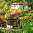 Abandoned vintage truck — Stock Photo