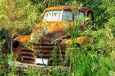 Abandoned vintage truck — Stock Photo