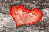 Heart shaped mildew — Stock Photo