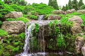 Waterfall in the garden  — Stock Photo