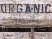 Organic — Stock Photo
