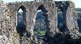 Dryslwyn Fawr Castle ruins — Stock Photo