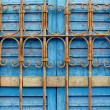 Nubian Blue Shutter — Stock Photo