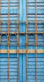 Nubian Blue Shutter — Stock Photo