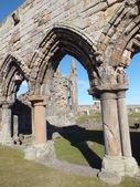 St. Andrew's Ruins — Photo