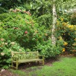Bench in Azalea woodlands — Stock Photo