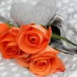 Orange Roses of Love — Stock Photo #33555389