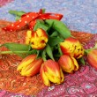Spring Flowers, simple tulips — Stock Photo