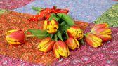 Spring Flowers, simple tulips — Stock Photo