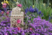 Decorative bird cage — Stock Photo