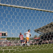 Chivas USvs. Houston Dynamo match — Stock Photo #14110653