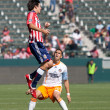 Chivas USvs. Houston Dynamo match — Stock Photo #14110669