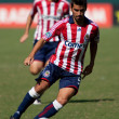 Chivas USvs. Houston Dynamo match — Stock Photo #14110709