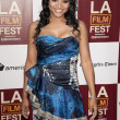 Stock Photo: Erica Hubbard arrives at the Los Angeles Film Festival premiere