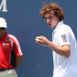 Lukas Lacko and Ernests Gulbis play a match - Stock Photo