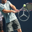 Ilija Bozoljac of Serbia vs Robby Ginepri of USA play a match - Stock Photo