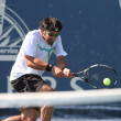 Janko Tipsarevic and Sam Querrey play a match — ストック写真