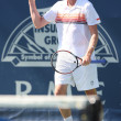 Janko Tipsarevic and Sam Querrey play a match — Photo