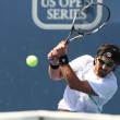 Janko Tipsarevic and Sam Querrey play a match — Stok fotoğraf