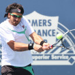 Janko Tipsarevic of Serbia (pictured) and Sam Querrey of USA play a match at the 2010 Farmers Classic - Stock Photo