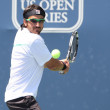 Janko Tipsarevic of Serbia (pictured) and Sam Querrey of USA play a match at the 2010 Farmers Classic — Stock Photo