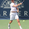 Andy Murray of Great Britain and Sam Querrey of USA (pictured) play the final match at the 2010 Farmers Classic — Stock Photo #14372777