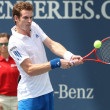 Andy Murray of Great Britain (pictured) and Sam Querrey of USA play the final match at the 2010 Farmers Classic - Lizenzfreies Foto