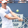 Andy Murray of Great Britain and Sam Querrey of USA (pictured) play the final match at the 2010 Farmers Classic — Stock Photo #14372917
