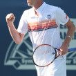 Janko Tipsarevic of Serbia and Sam Querrey of USA (pictured) play a match at the 2010 Farmers Classic — Stock Photo #14375317