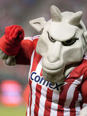 Chivas mascot getting the fans involved during half time of the match — Stock Photo