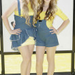 Постер, плакат: Destinee Monroe and Paris Monroe attend the Despicable Me premiere