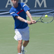 Matthew Ebden in action during the game — Photo