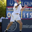 Leonardo Mayer in action during the game — Stock Photo