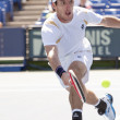 Leonardo Mayer in action during the game — Stock Photo #14903593