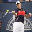 Sam Querrey in action during the game — Stock Photo #14903609