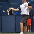 Xavier Malisse in action during the game — Stock Photo #14903635