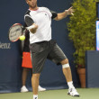 Xavier Malisse in action during the game — Stock Photo #14903661