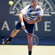 Marinko Matosevic in action during the game — Stock Photo #14903999