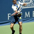 Marinko Matosevic in action during the game — Stock Photo #14904007