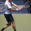 Marinko Matosevic in action during the game — Stock Photo #14904013