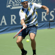 Marinko Matosevic in action during the game — Stock Photo