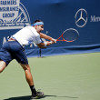 Marinko Matosevic in action during the game — Stock Photo #14904025