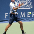 Marinko Matosevic in action during the game - Stock Photo